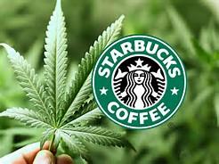 Starbucks weed